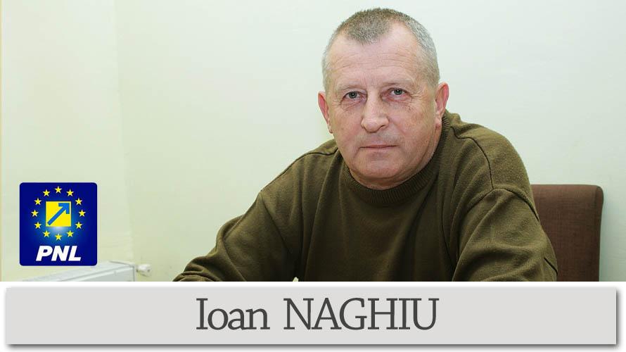 Consiliul Local Ileanda-Ioan NAGHIU-consilier local