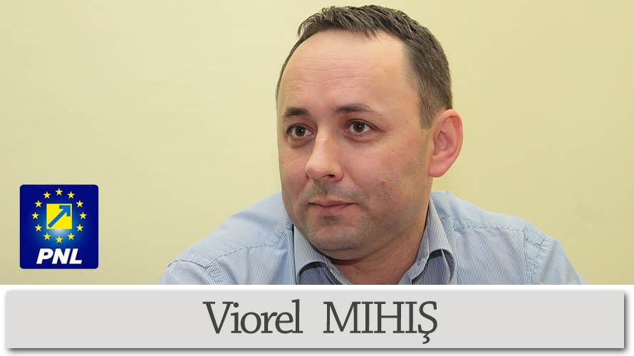 Consiliul Local Ileanda-Viorel MIHIS-consilier local