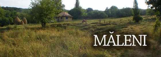 Maleni-Salaj